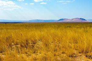 landschap van woestijn in Madagaskar foto