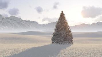 winter boom foto