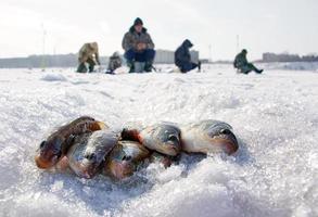 winter vissen foto