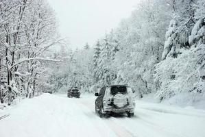 winter rally foto