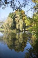 landschap van bugey foto