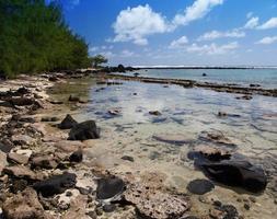 Mauritius. steenachtig landschap van het eiland foto
