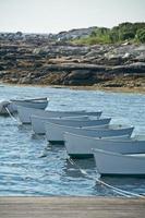 lijn van roeiboten in water foto
