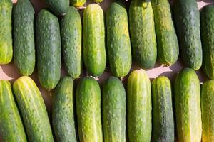 komkommers op een rij op de markt foto