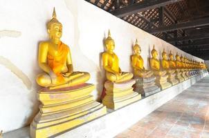 rij van Boeddha beelden tempel in Ayutthaya Thailand foto