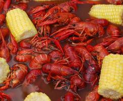 Louisiana langoesten koken cookout foto