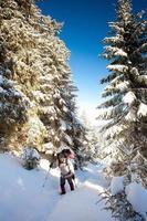 wandelaar in winter bergen