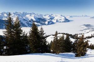 mistige winterdag in Zwitserland foto