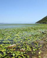het meer van montenegro foto
