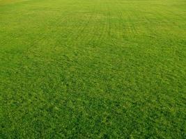 golf groen foto