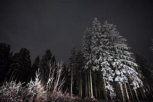 Winterberg Duitsland 's nachts