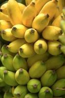 tros bananen geïsoleerd