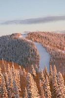 berg in de winter, stoomboot skioord, Colorado foto