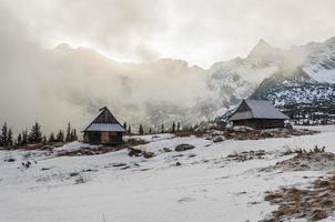 vallei bedekt met mist