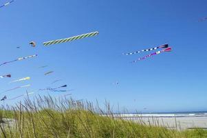 kleurrijke vliegers foto