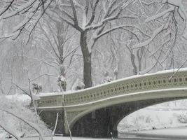boogbrug in sneeuwstorm foto