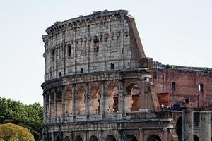 colusseum, rome foto