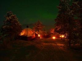 wilderniskamp bij maanlicht foto