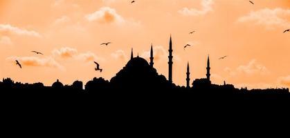 moskee vorm contour foto