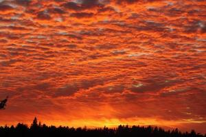 oranje zonsondergang foto