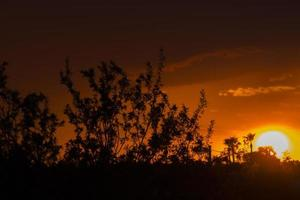 zonsondergang woestijn foto