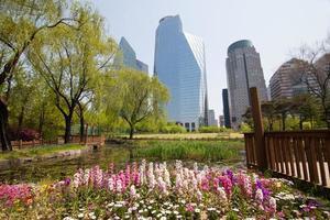 vijver in park in de buurt van kantoorgebouwen in seoul foto