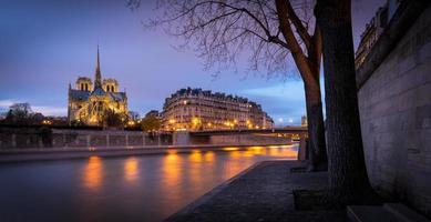 Notre Dame kathedraal, schemering op ile de la cite, Parijs foto