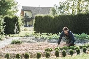 synergetische landbouw foto