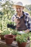 tuinieren is een hobby van senioren foto