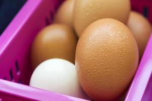 eieren gesloten