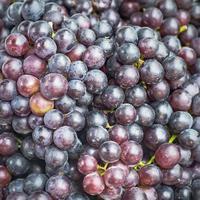 close-up druiven foto