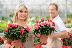 aardige bloemisten die in de kas werken foto