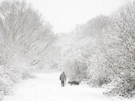 man en hond in de sneeuw