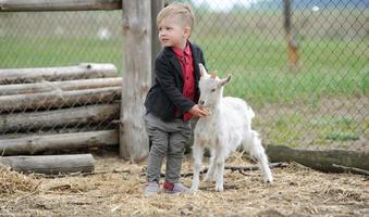 kind en geiten foto