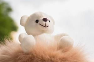 teddybeer met foto