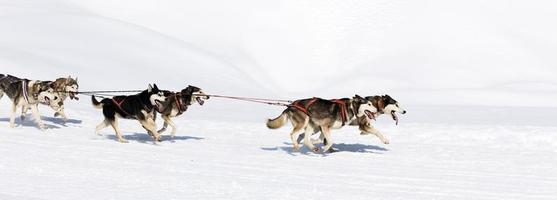 panoramische race foto