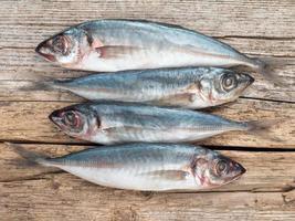 carangidae vissen op het grijze houten bord foto