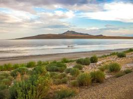 Great Salt Lake Antelope Island foto