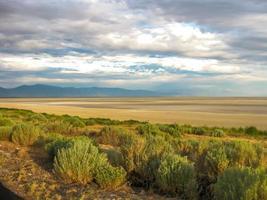 antilopen eiland Utah foto