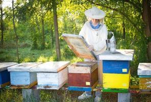 imker die zijn bijen controleert. foto