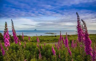 kleurrijk kustlijn foto
