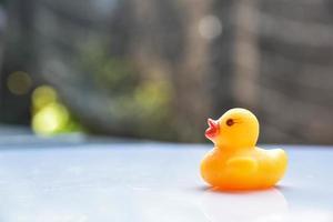 gele badeend foto