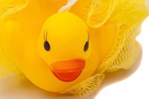 gele badeend bladerdeeg foto