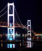 zwaan grote brug in een prachtig uitzicht foto
