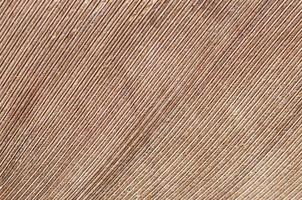 lijnen