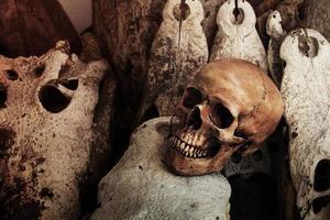 menselijke schedel krokodil foto