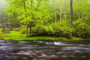 cascades op de buskruit rivier, in de buurt van prettyboy reservoir in bal foto