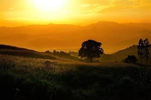 heuvel met zonsondergang foto