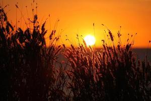 noordelijk grondgebied zonsondergang foto