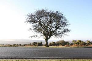 langs de weg deadmans heuvel nieuw bos nationaal park